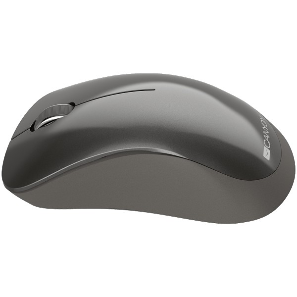 Canyon  2.4 GHz  Wireless mouse with 3 buttons DPI 1200 Battery:AAA*2pcsDark Gray 67*109*38mm0.063kg